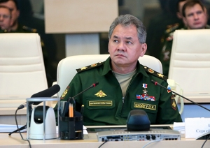 Shoygu in the Videoconference (photo: Mil.ru)