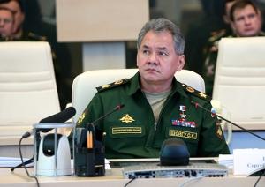 Shoygu in the Videoconference (photo: Mil.ru)